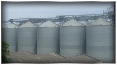 Grain Bulk Handlers
